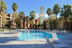 Кампус, внутренняя территория с бассейном, фото 1, California State University