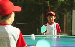 Летний лагерь в Швейцарии для подростков предлагает большой выбор игр в настольный теннис